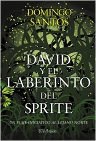 Descargar DAVID Y EL LABERINTO DEL SPRITE