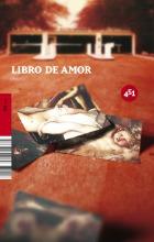 Descargar LIBRO DE AMOR